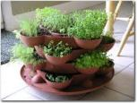 Grow your own herbs - bring them inside during winter - photo from outdoor.com