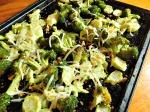 Oven Roasted Broccoli x