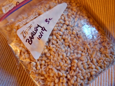 Bag & Tag long cooking grains and freeze (short term) to make the most of your time