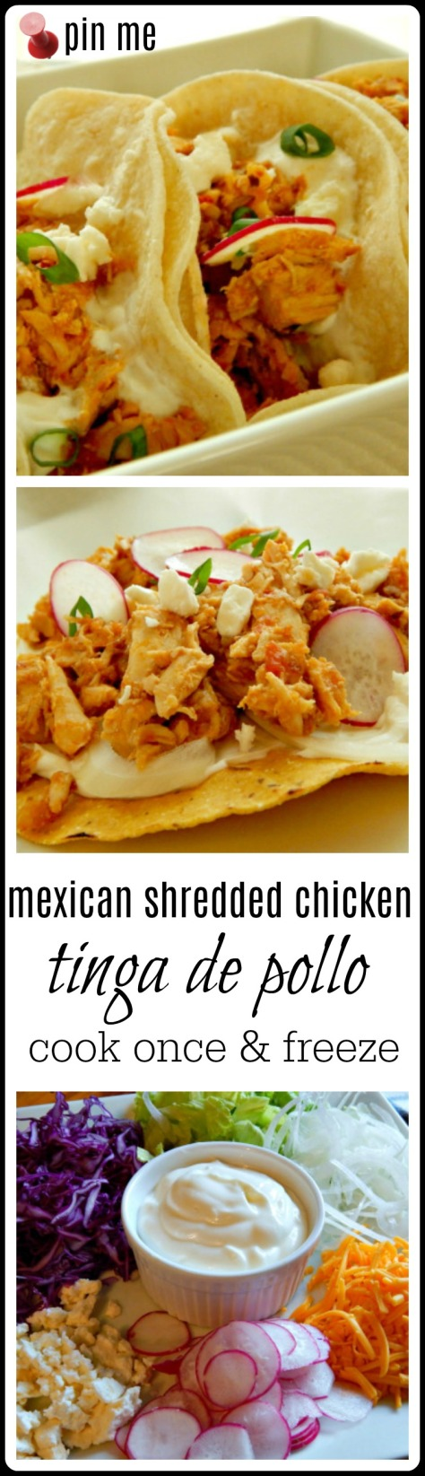 Chicken Tinga Mexican or Pueblan Shredded Chicken - makes enough to portion & freeze