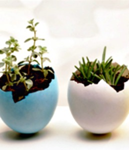 easter-crafts-planters (1)