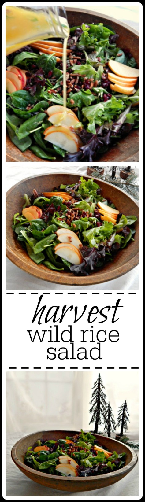 Harvest Wild Rice Salad with Oranges, apples & pears & a citrus vinaigrette