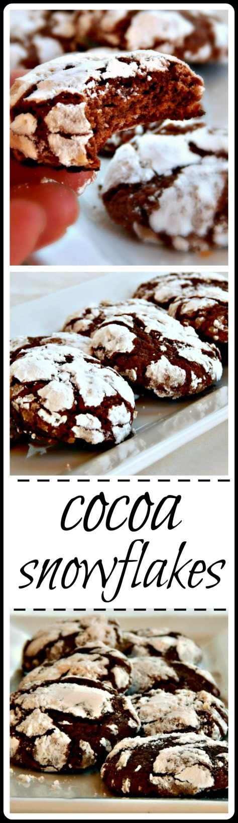 Cocoa Snowflakes - a fave! I love the crinkly crispy crust and chewy center!