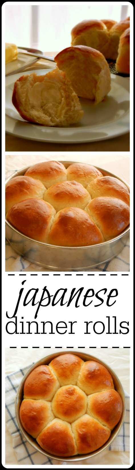 Japanese dinner rolls - these are the lightest, fluffiest dinner rolls you can ever imagine!