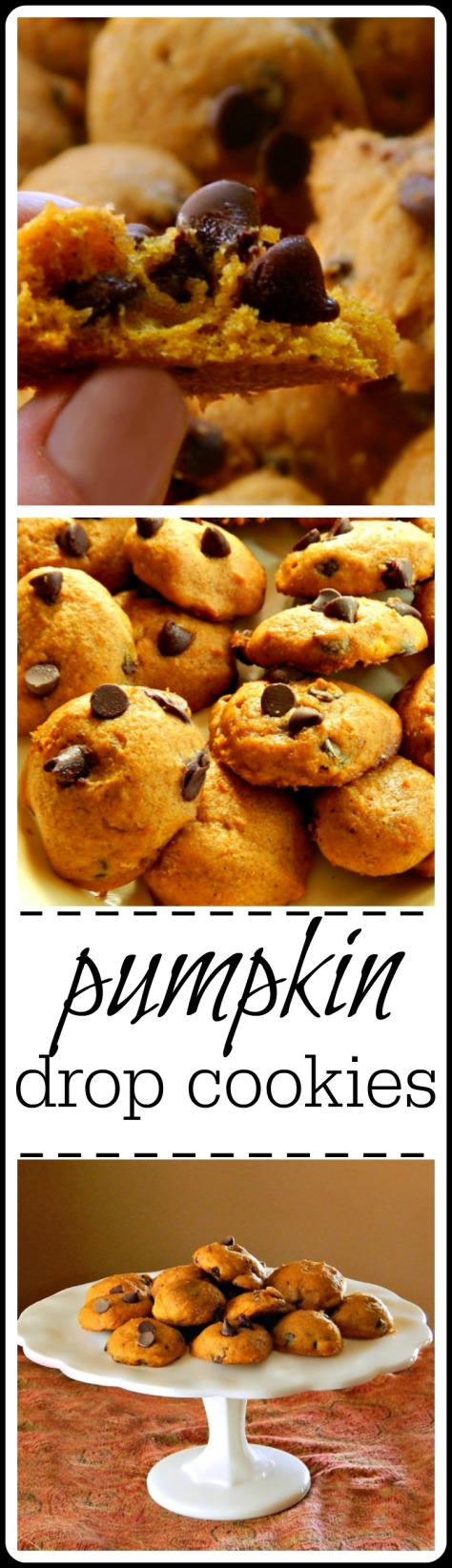 Pumpkin Drop Cookies: Ya gotta love these simple yet delectable cookies that are stirred up with a spoon! Make raisin or chocolate chip.