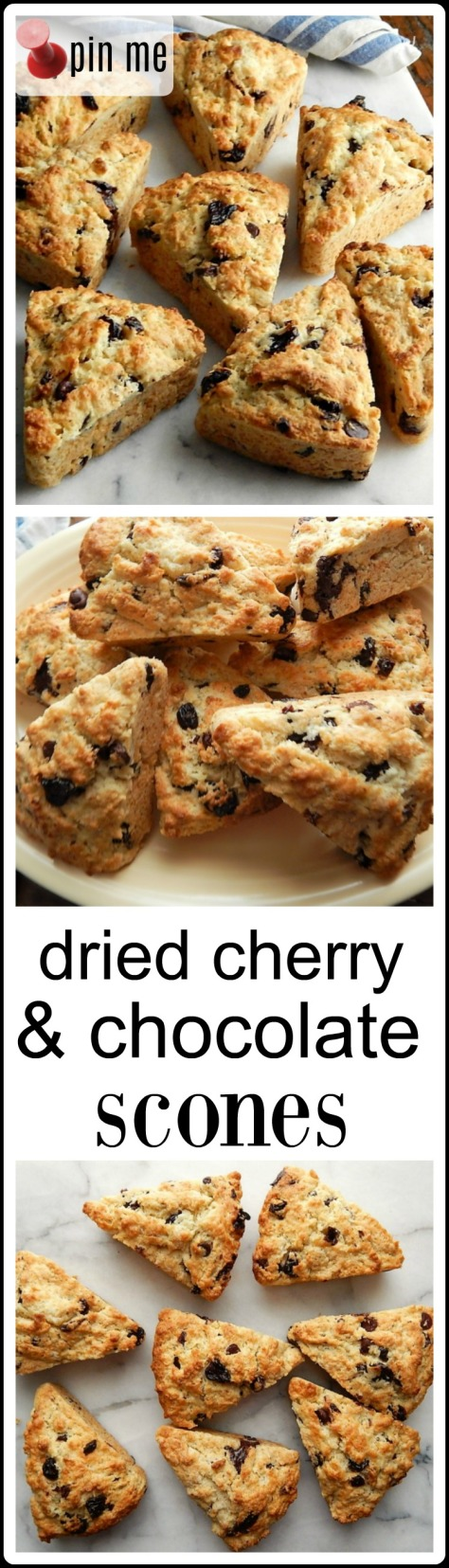 Dried Cherry & Chocolate Scones - use two different chocolates for the most amazing flavor combo with the dried cherries! These are going down as a family favorite!